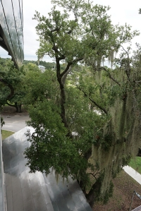 View from the balcony of the board room, Ohr-O'Keefe Museum of Art, Biloxi, Mississippi